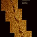 Formazione solare halfa,                                Alessandro Bianconi