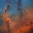 The Elephant's Trunk Nebula,                                Jacek Bobowik