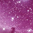 IC 434 and Horsehead Nebula,                                Marco Zante