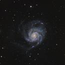 M101,                                Rodd Dryfoos