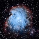 NGC 2174_MonkeyHead_Nebula,                                W7VLKD0TLX