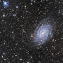 NGC6744 Pavo Spiral Galaxy VC200L,                                Richard Muhlack