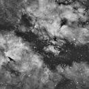 IC1318 H-Alpha,                                Gianluca Galloni