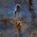 IC1396 en SHO crop,                                Georges