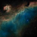 Sh2-292/296 : The SeaGull nebula in Monoceros & Canis Major - SHO,                                Daniel.P