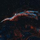 Western Veil Nebula,                                Derek Foster