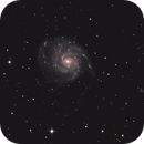 M101,                                tommy_lookville