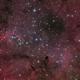 IC 1396,                                Cheman