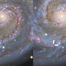 Intermediate-Luminosity Red Transient  in M51,                                Kevin Morefield