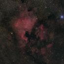 NGC 7000 - Nordamerika-Nebel - ein Sommerfoto,                                Horst Twele