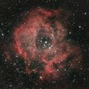 NGC 2237,                                David Kralj