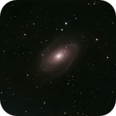 M81,                                Salvatore Giambruno