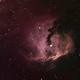 IC 2177 - The Head of the Seagull,                                David N Kidd