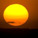 Soleil du Causse Noir,                                Nono