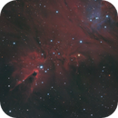 NGC 2264 - Cone and Fox Fur Nebulae,                                Mike Hislope