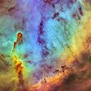 IC 1396 Elephants Trunk Nebula,                                William Burns