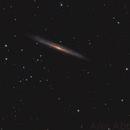 Splinter Galaxy,                                Anis Abdul