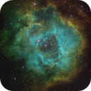 Ngc 2239 /Rosette Nebula SHO,                                Dave Bloomsness