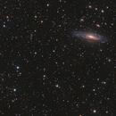 NGC 7331 and Stephan's Quintet,                                Matt McBee