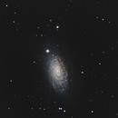 M 63 - Sunflower Galaxy,                                Nick's Astrophotography