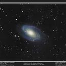 Messier 81,                                Stefan Baumgartner