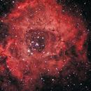 Rosette Nebula HaRGB,                                Rino