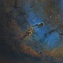 IC 1396 - SHO,                                Elboubou