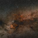 Cygnus constellation,                                Pawel Turek
