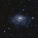 NGC 1961 & Vicinity (Cam) in LRGB - Short Integration Time,                                Ben Koltenbah