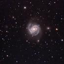 M100  Intermediate Spiral Galaxy  --  LRGB,                                Mike Mulcahy