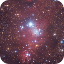 NGC 2264,                                Samuli Vuorinen