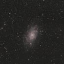 M33 LHRGB Cropped,                                John Massey