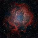 NGC2237 Rosette nebula,                                Andreas Nilsson