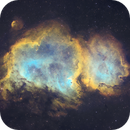 The Soul Nebula (Westerhout 5) in SHO,                                Douglas J Struble