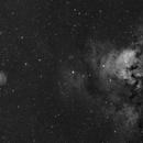 NGC 7822 - Ha,                                Brad