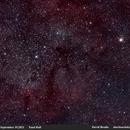 IC1396 & Garnet Star,                                David Brodie