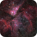 NGC 3372 (Data provided by Fred Gaschk),                                Jim Matzger