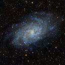 M33 - Triangulum Galaxy,                                Bryce Zuccaro