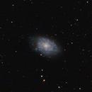NGC 7793   Flocculent Spiral in Sculptor,                                Doug Summers