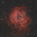 NGC 2238 Rosette Nebula,                                Stefan-Harry-Thrun
