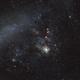 Tarantula Nebula with part of Large Magellanic Cloud,                                Wilson