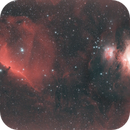 Orion and Horsehead Nebula with William Optics Redcat 51,                                Ray's Astrophotography