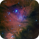 Cone Nebula / Fox Fur Nebula / Christmas Tree Cluster,                                Frank Kane