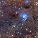 Iris Nebula - NGC 7023,                                fmcmullan