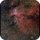 NGC6188 - The Fighting Dragons of Ara,                                Arcturus Photography