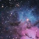 Trifid-Nebula,                                Michael Fürsatz