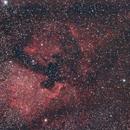 NGC 7000 and IC 5070,                                GALASSIA 60