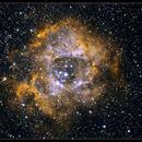 Nébuleuse de la Rosette NGC 2244,                                Frédéric THONI