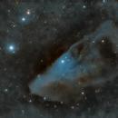 IC 4592: The Blue Horse Head Nebula,                                Doug Griffith