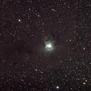 The Iris Nebula, NGC 7023,                                jdhartgerink